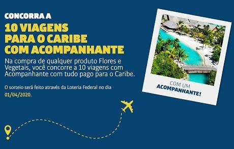 Promoção Flores e Vegetais e Você No Caribe